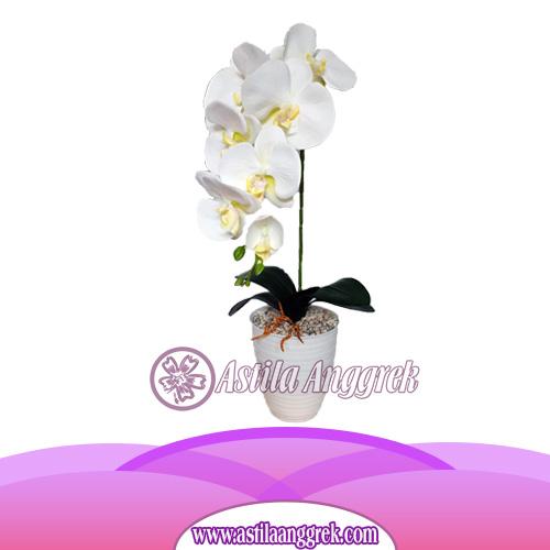 Bunga Anggrek Latex Artificial AS AGRL-003