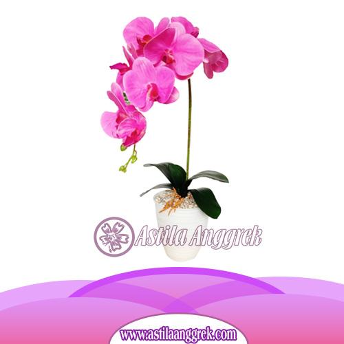 Bunga Anggrek Latex Artificial AS AGRL-007
